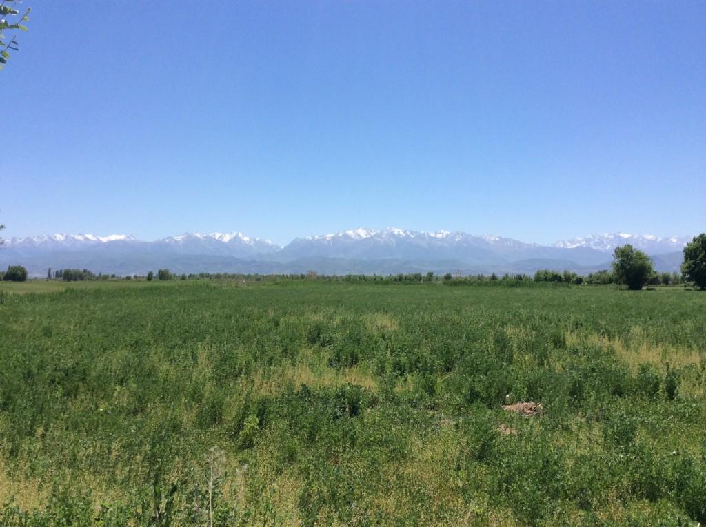 Chui Kyrgyzstan, Living in kyrgyzstan