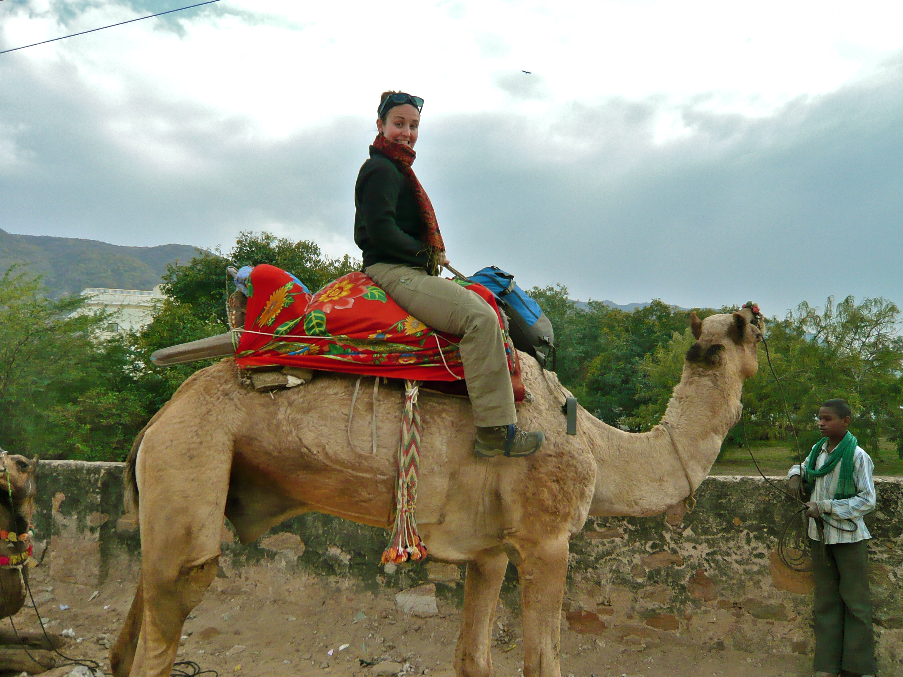 where can I ride camels in india what to do in pushkar why go to pushkar