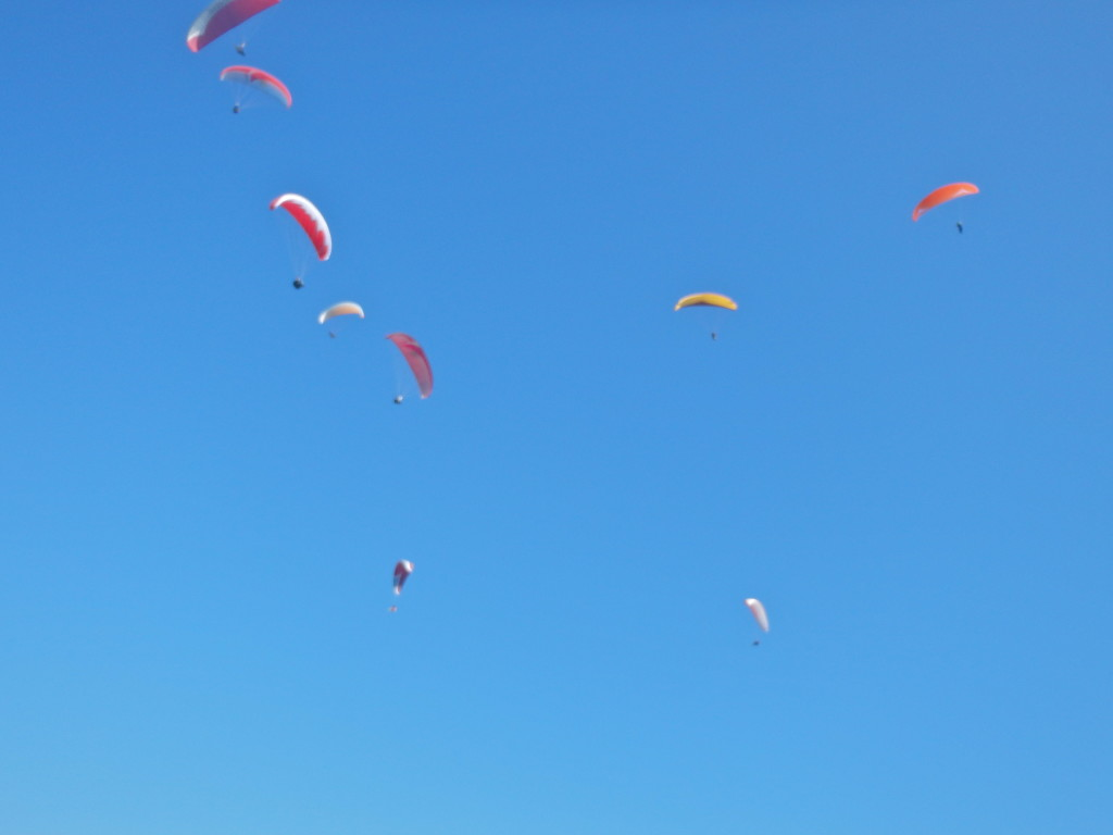 Paragliding in Pokhara, Nepal best things to do in nepal adrenaline sports in nepal where to paraglide in nepal best experiences in pokhara what is the best place in nepal
