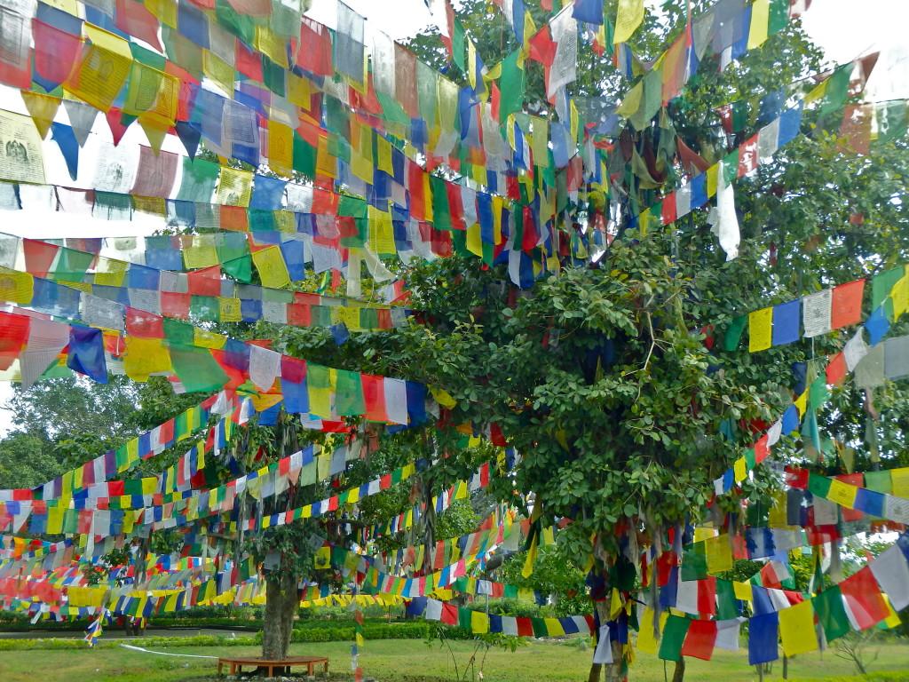 a day trip to Lumbini, birthplace of buddha lumbini travel blog where to visit in nepal
