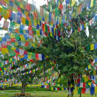 2 Days in Lumbini Nepal, Birthplace of Buddha