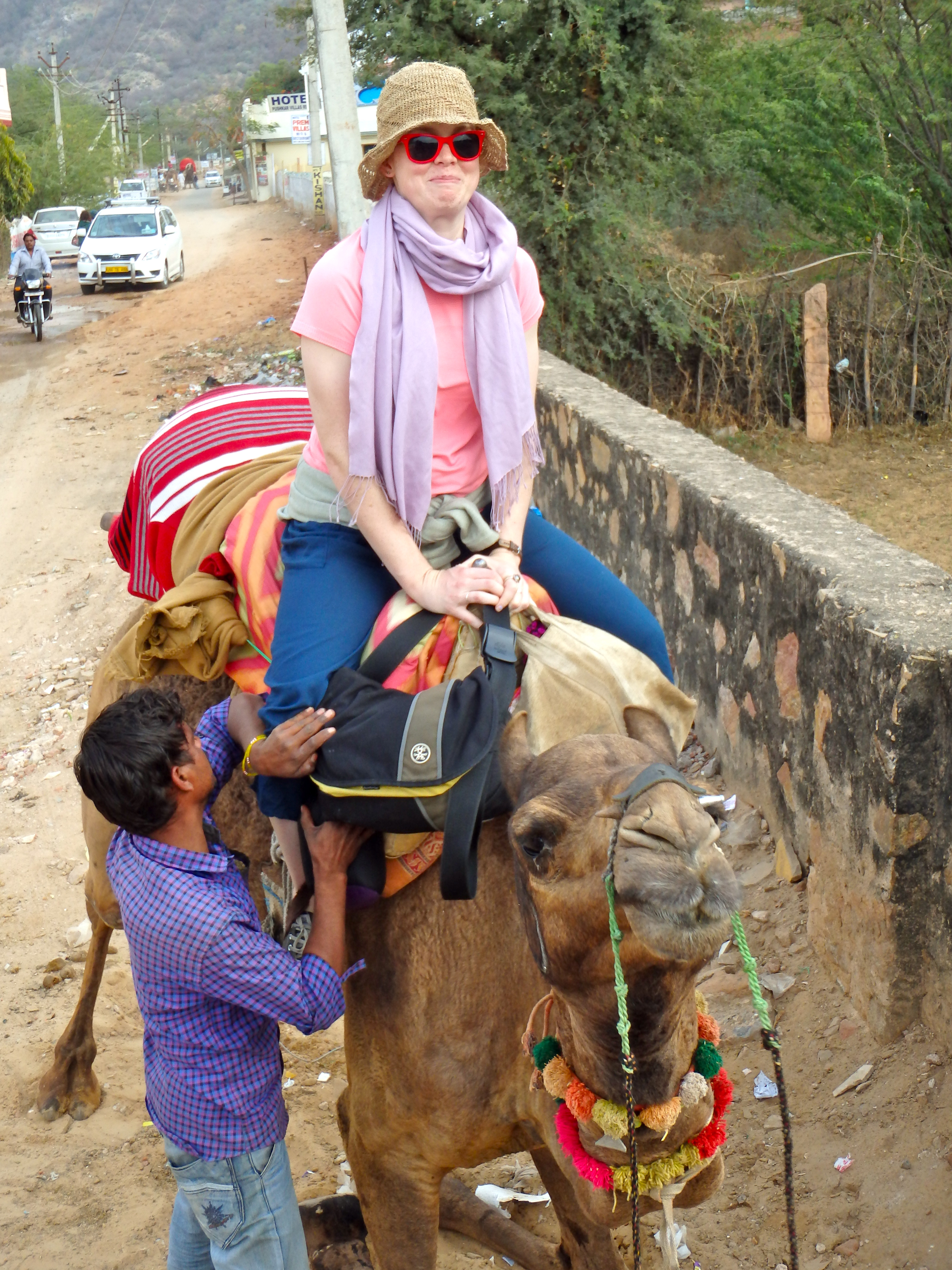 riding camels in india riding camels in pushkar how can I ride a camel in india