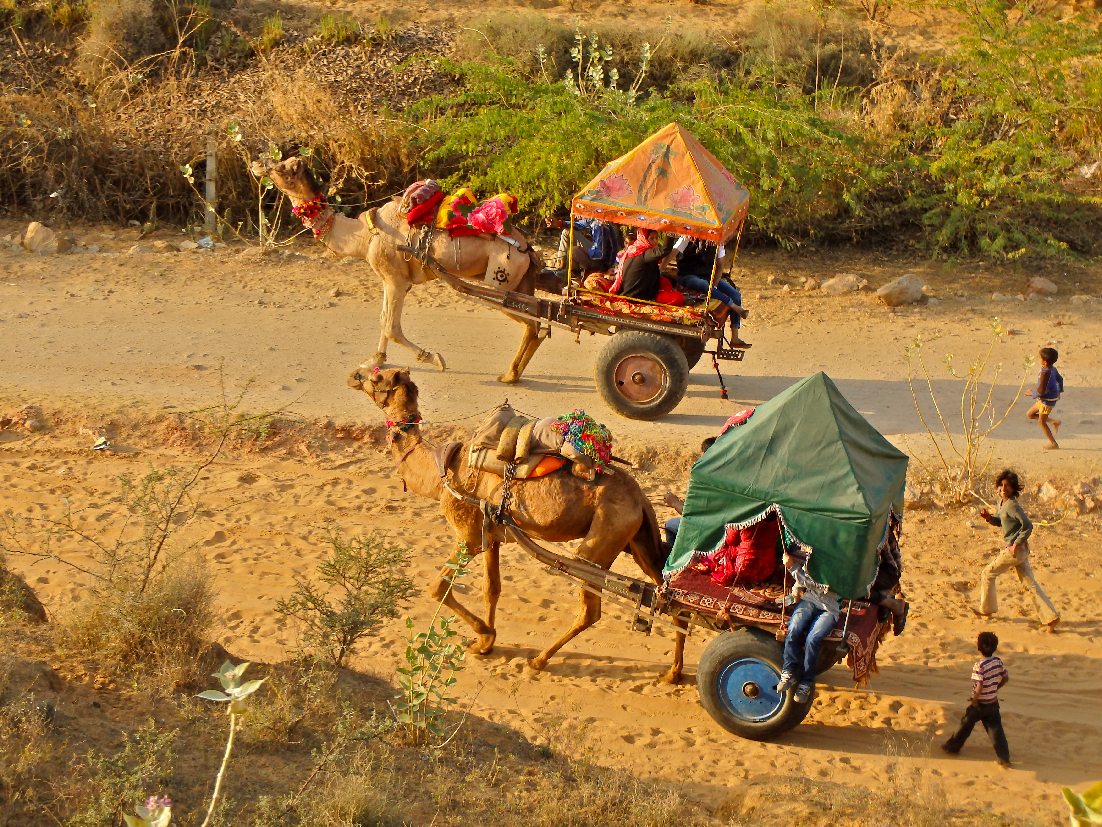 best things to do in india what to do in india in ten days 10 day india trip