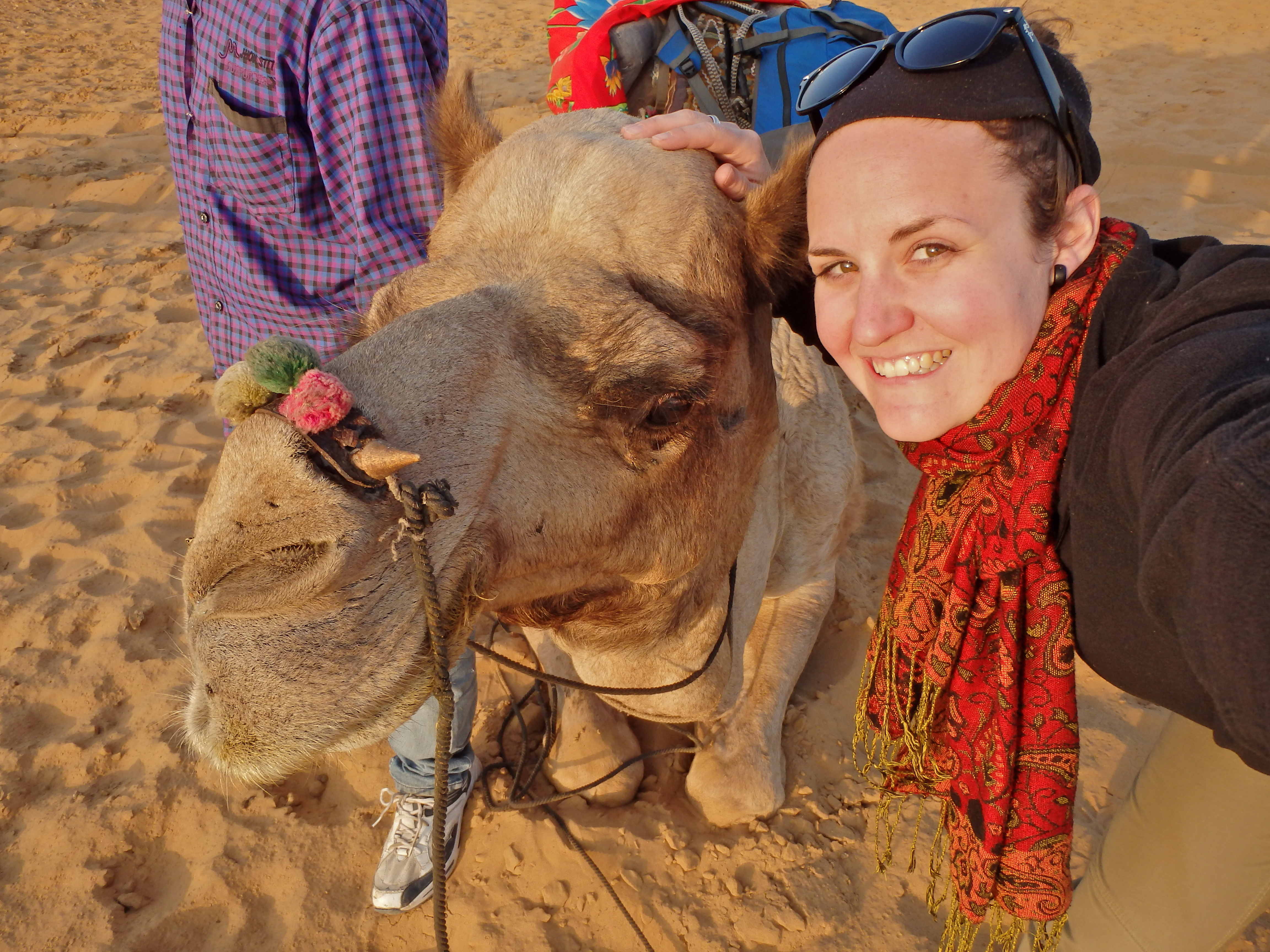 riding a camel in india travel blog how to ride a camel where can I ride a camel
