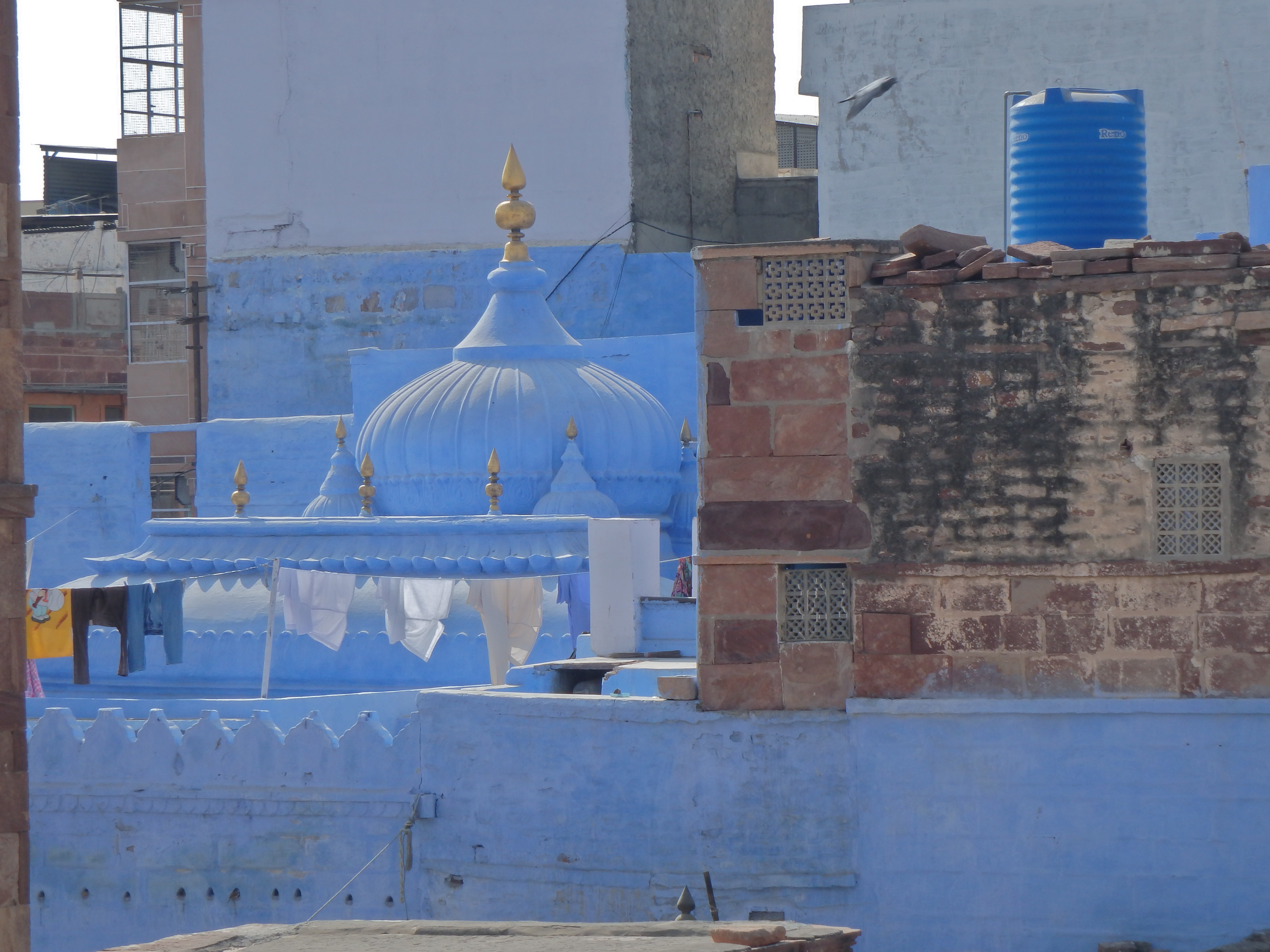Jodhpur, India, Blue city rooftops places to visit in india where to go in rajasthan, where is jodhpur