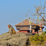 Gorkha and the Manakamana Cable Car: Day Trips from Kathmandu