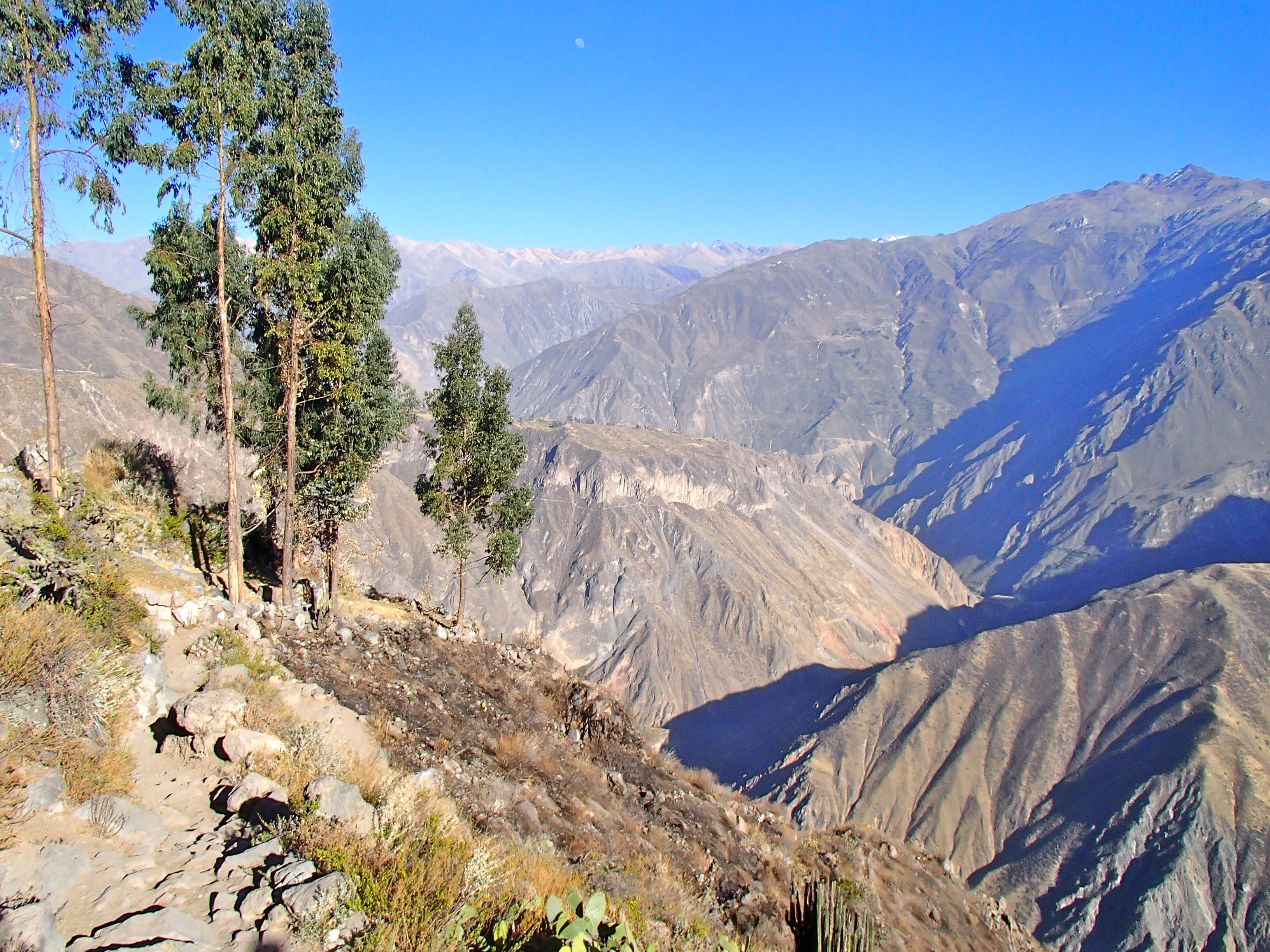 hiking in the colca canyon peru, colca canyon travel blog