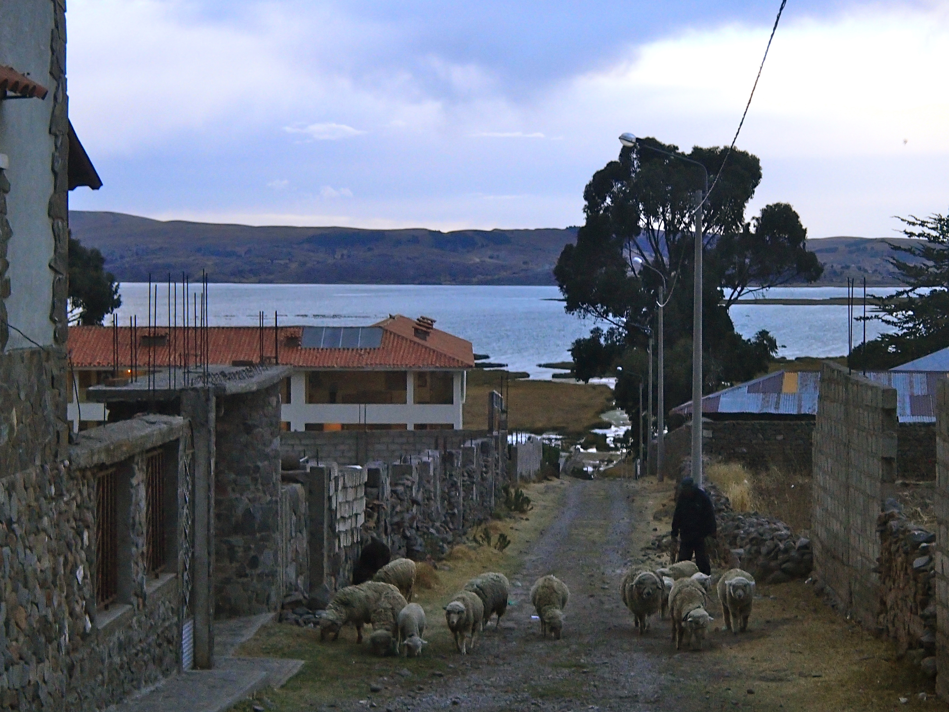 eastern shores of lake titicaca peru day trips from puno top places to go in peru