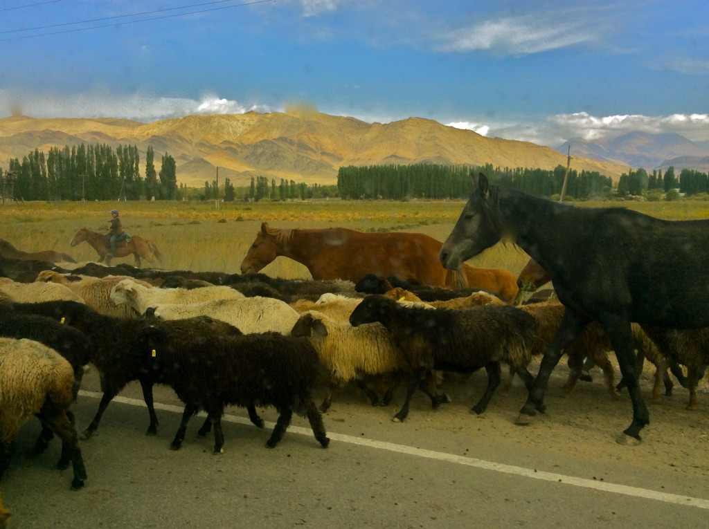 Travelling to Talas Kyrgyzstan