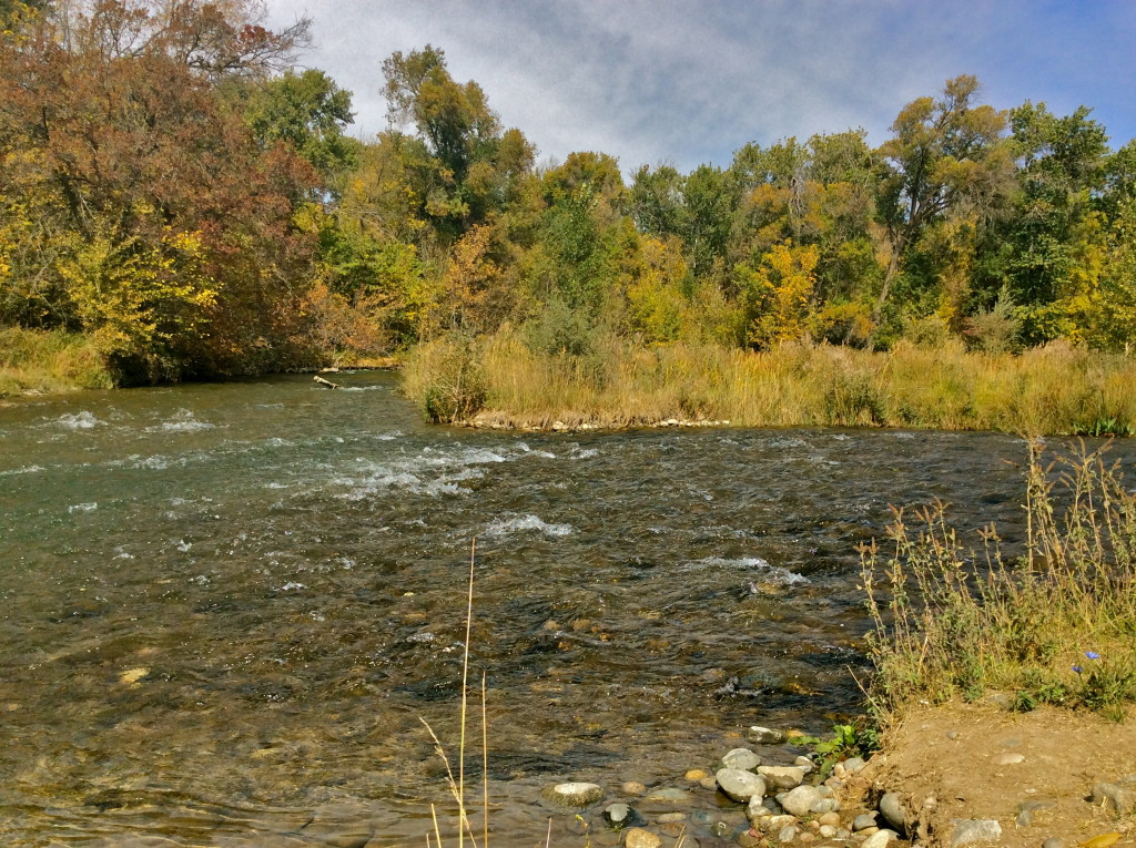 Talas River in Talas City Kyrgyzstan