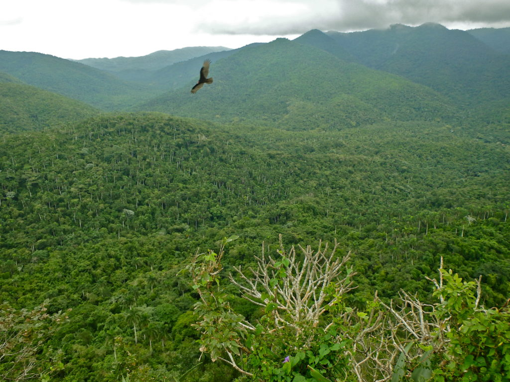 places to hike in Cuba where is the best hiking in Cuba solo female travel blog cuba