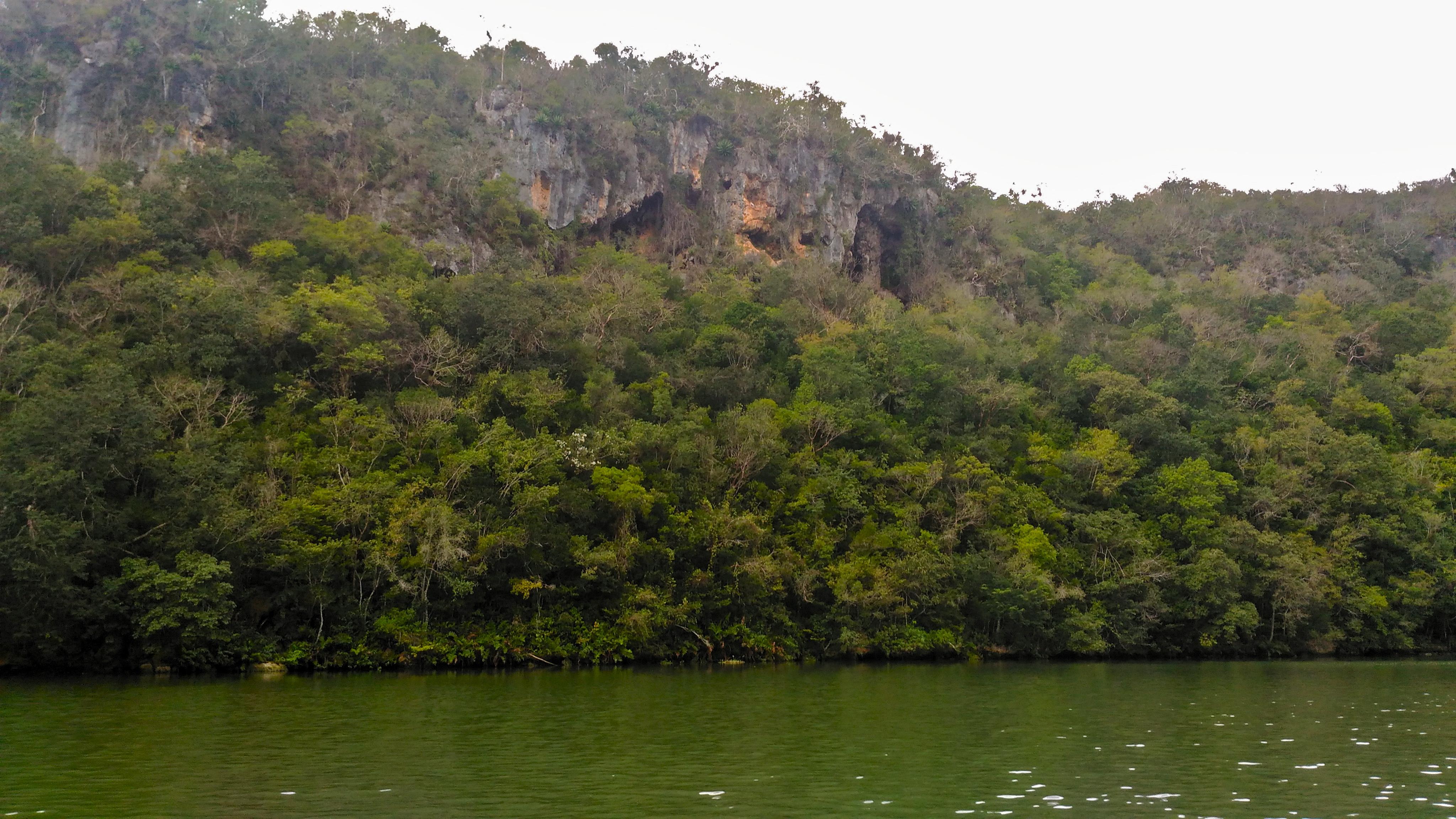 Rio Canimar