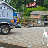 West Coast Trail Transportation- Bamfield Bound