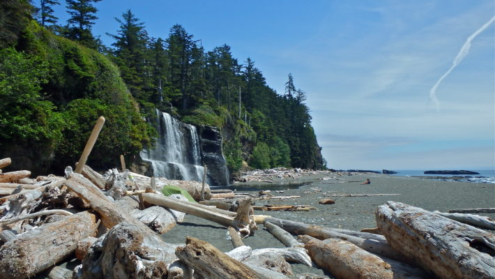 Hiking the West Coast Trail Blog: One of the Best Hikes in Vancouver Island