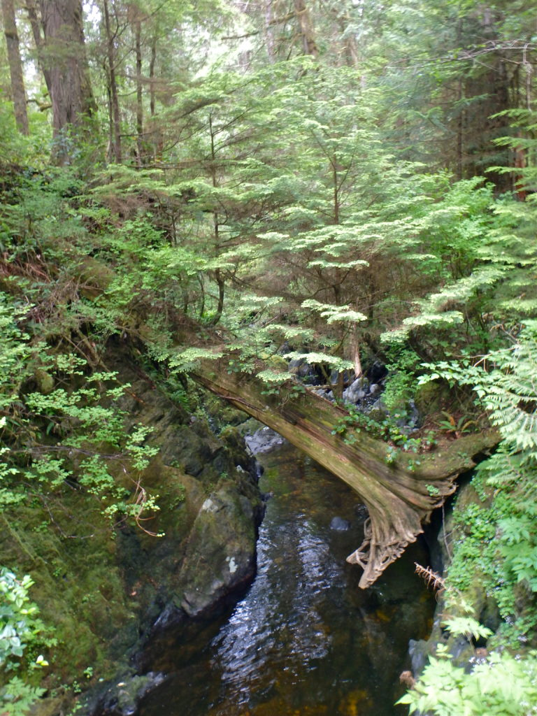 West coast trail difficulty