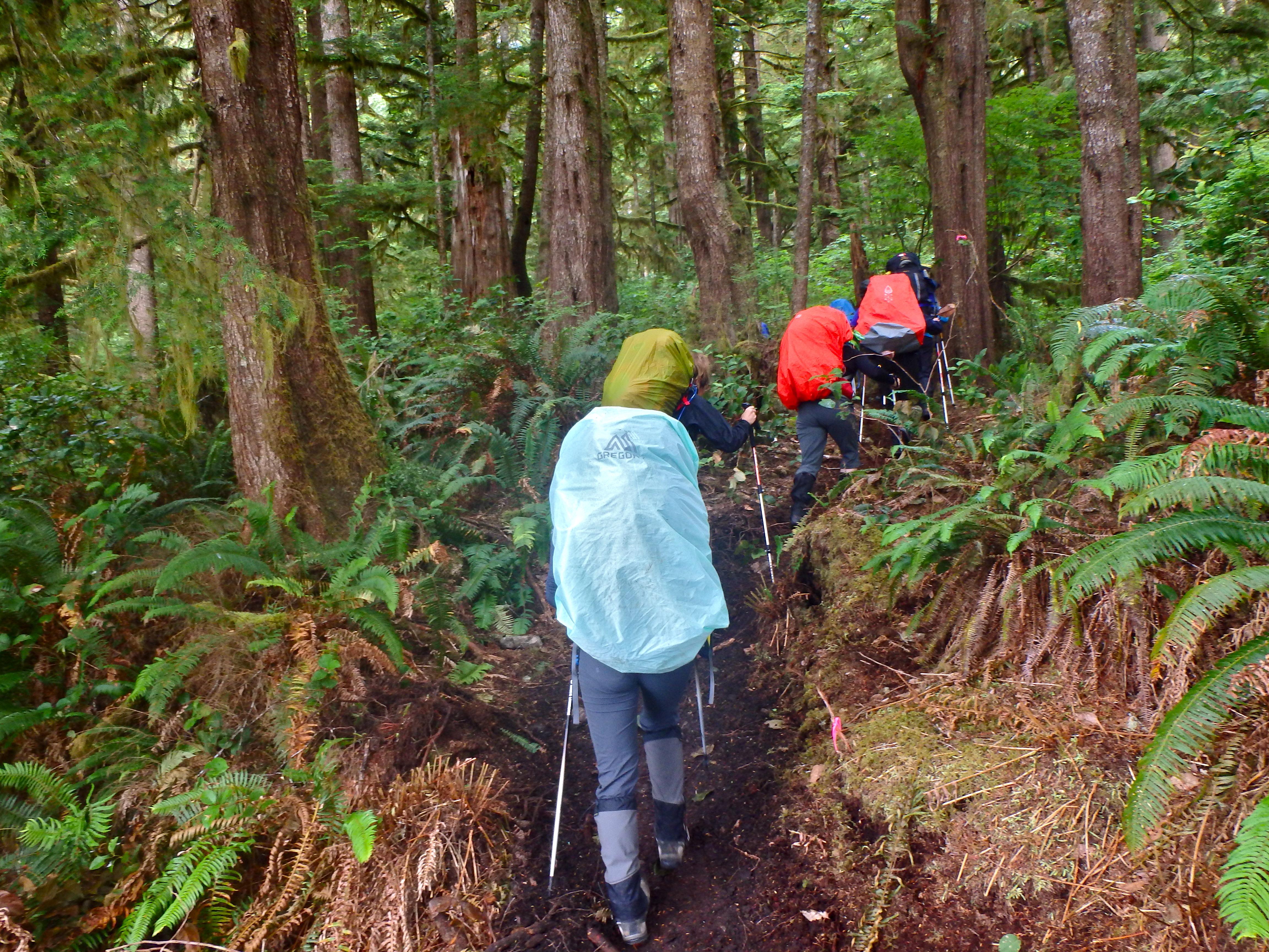 West Coast trail blog