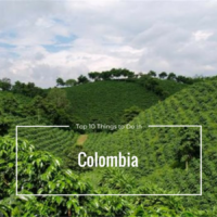 10 Things You'll Love to do When Travelling Colombia