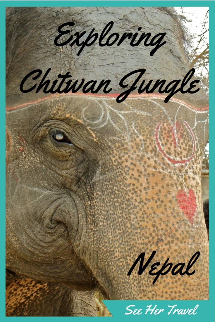 Adventure through Nepal's national jungle in Chitwan, a gorgeous reserve full of rhinos, tigers, elephants, and crocodiles! A few days in the low lands of Nepal takes you away from the Himlayas but brings you to a whole new world!