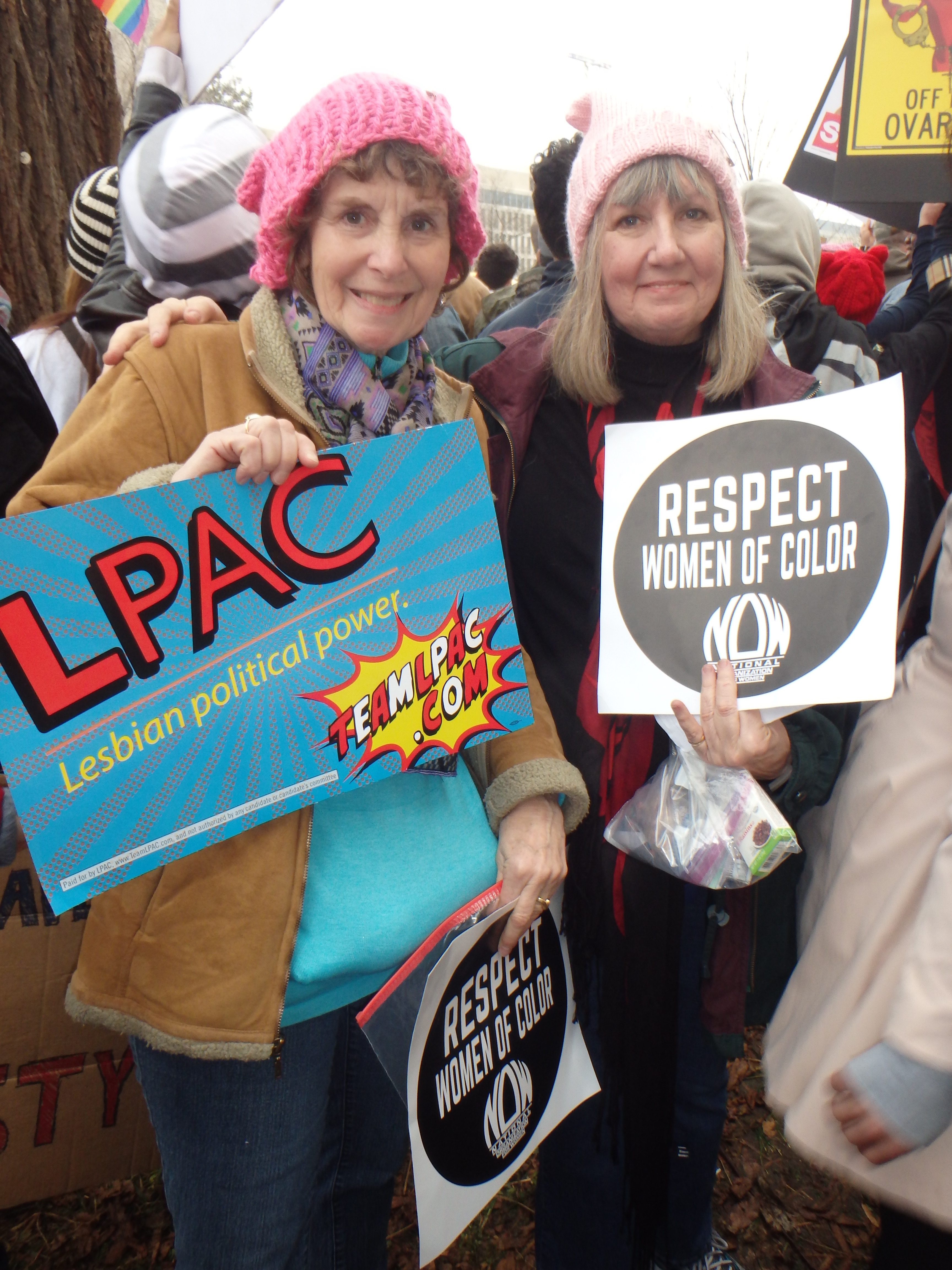Washington DC Womens march experience best signs