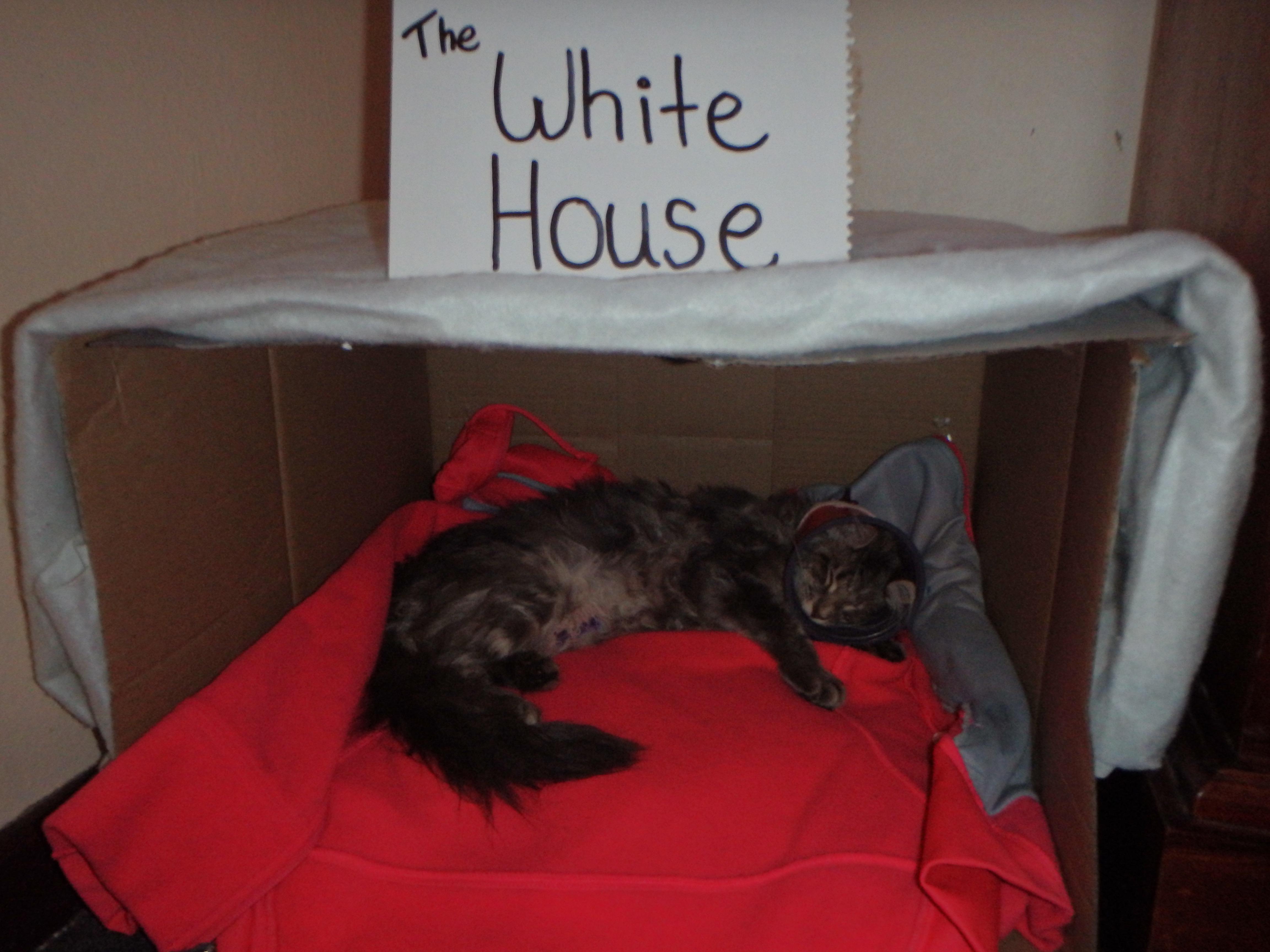 michelle obama's white house