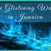 Illumination at the Glistening Waters in Jamaica's Luminous Lagoon