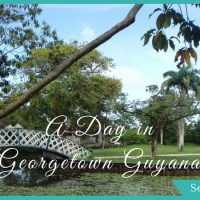 A Whole Day of Things to Do in Georgetown Guyana – Museums, Gardens, and Giant Sloths