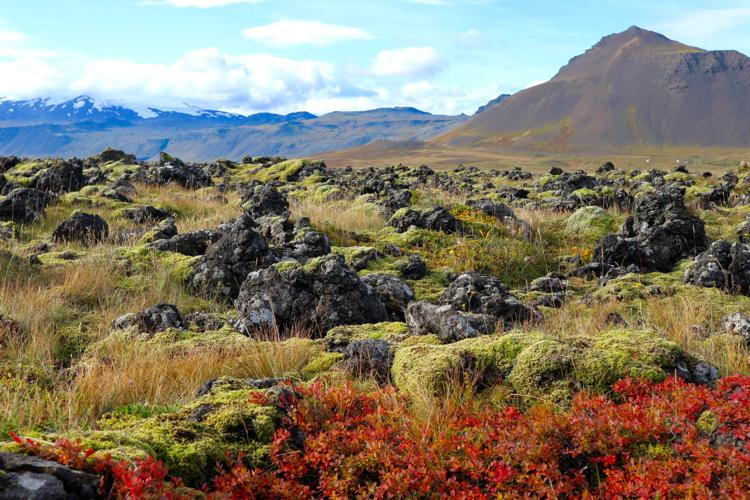 Budir elf region snaefellsnes peninsula iceland