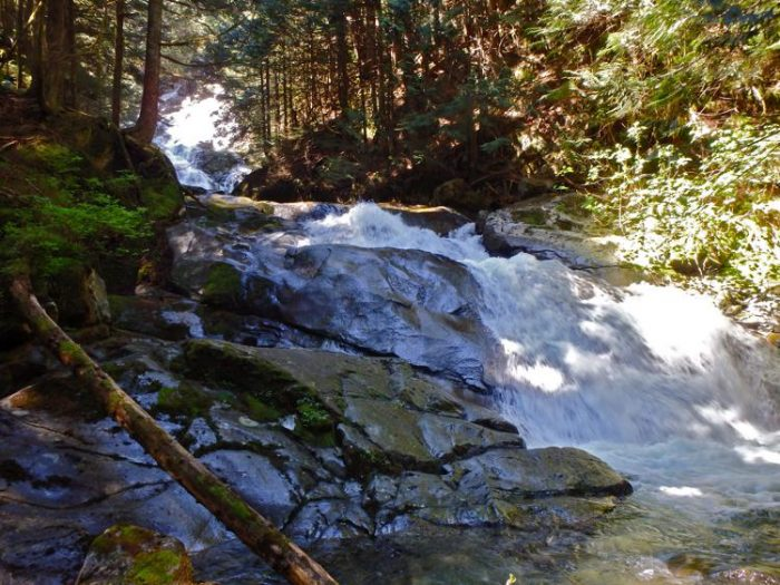 Kennedy Falls hike north vancouver hikes